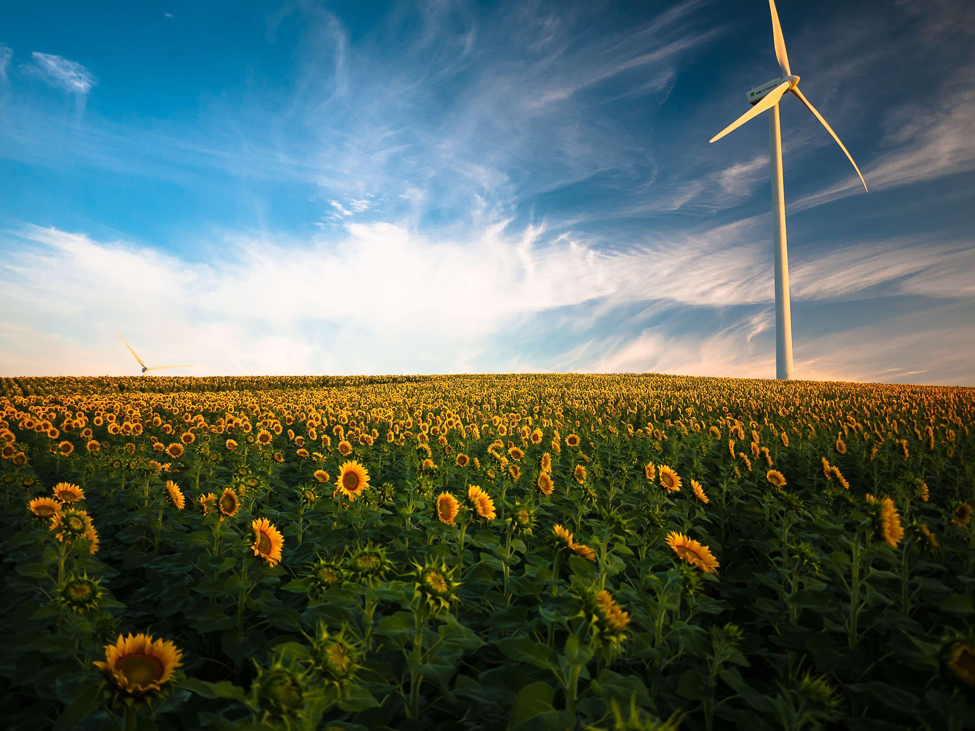 自然エネルギー100%をめざすグローバル企業のイニシアティブ「RE100」